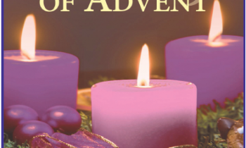 3rd Sunday of Advent Readings and Prayers plus Notices for the week ahead
