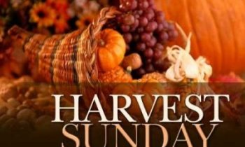 10:45am Harvest Sunday 3rd October 2021 :Service details, Readings, Prayers and Notices